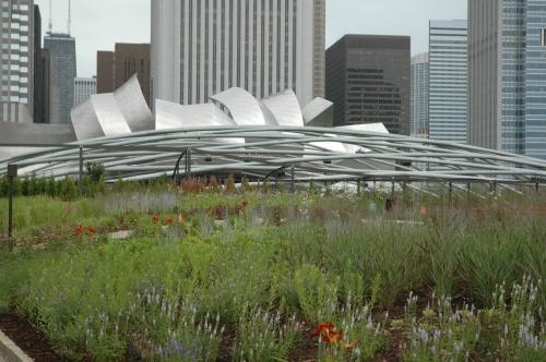 The Jay Pritzker Pavilion in Millennium Park.