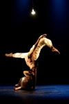 delfos-danza-contemporanea-by-lois-greenfield-21